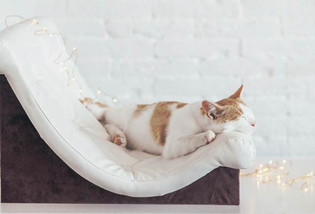 Hygge Ideas for Nurturing Yourself - Chair