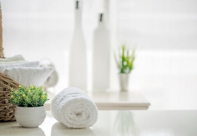 White backdrop with rolled white towel and plant with frosted bottles