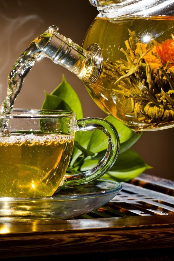 How to Grow a Tea Garden