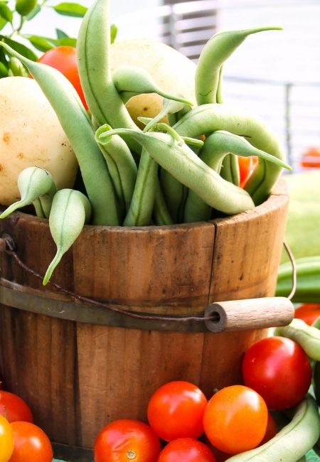 Wooden bucket with fresh green beans, cherry tomatoes surrounding it - farmer's market