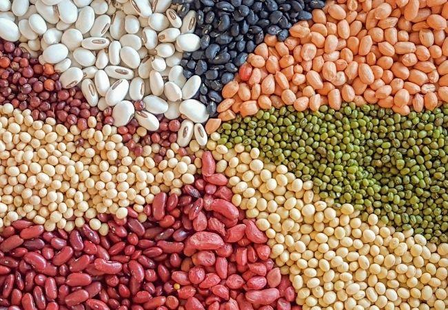 Dried beans and grains